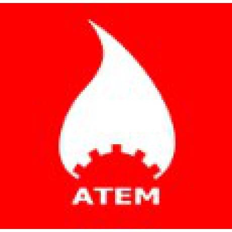Газовый котел Атем Житомир-3 КС-ГВ -025 СН (дымоход сверху)